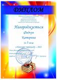 Федчун_Катерина__Диплом_2021